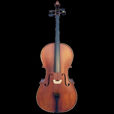 Vivo Elite Cello 4/4    Outfit