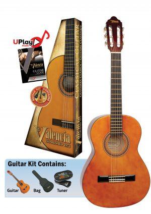 Berry Music guitar